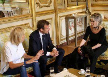 Brigitte Bardot flingue Brigitte Macron à propos des mesures de sécurité sanitaire
