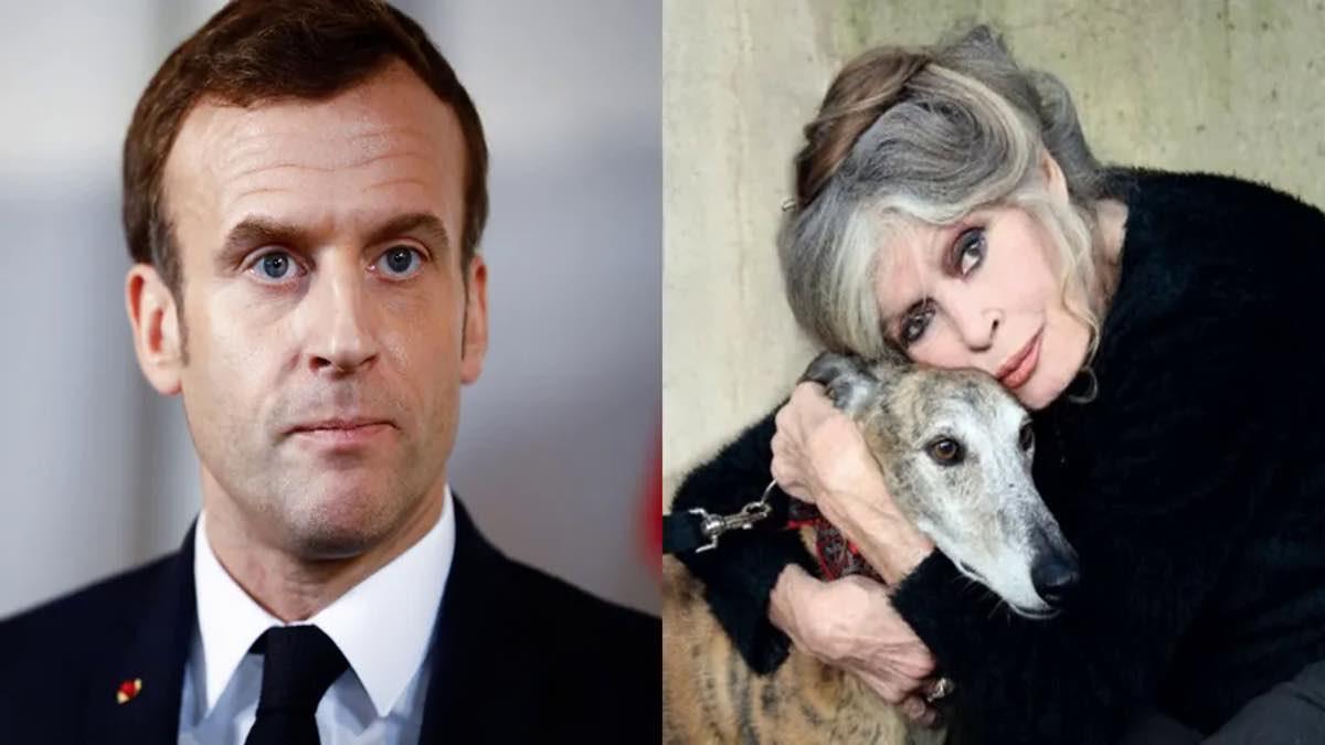 Brigitte Bardot tacle Emmanuel Macron le fossoyeur d'animaux