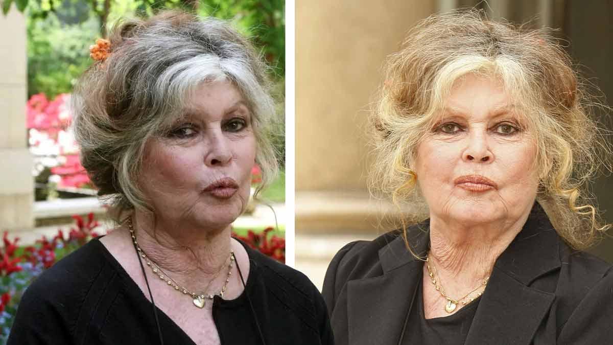 """"""" Je m'en fous et je vais être condamnée encore. J'irai en taule » : même à 86 ans Brigitte Bardot n'est pas prête de se taire !"""