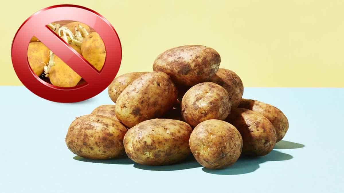 Ces astuces révolutionnaires pour éviter que vos pommes de terres germent